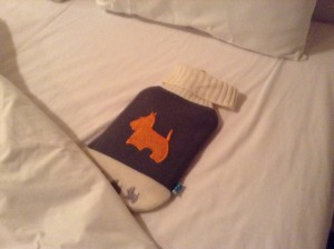 Llama-embroidered hot water bottle as a welcome sight for our beds at night.  Temperature dropped to almost freezing in the Andes Mountains where we were